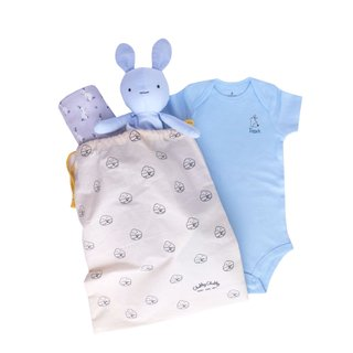 Oh Sweet Bunnies Gift - Blue